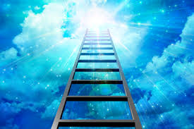 کارآموزی نردبان موفقیت در حسابداری