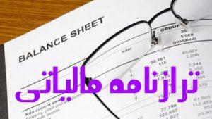 گزارش بازرس قانونی